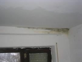 Schimmelbildung am Fensterstutz, Bausachverständiger